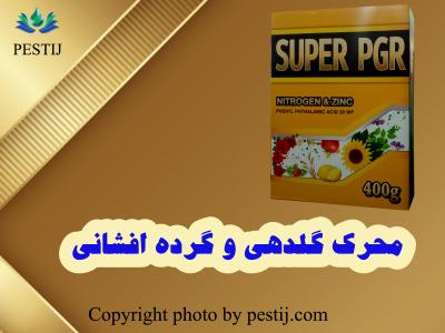 بنر سوپر پی جی آر